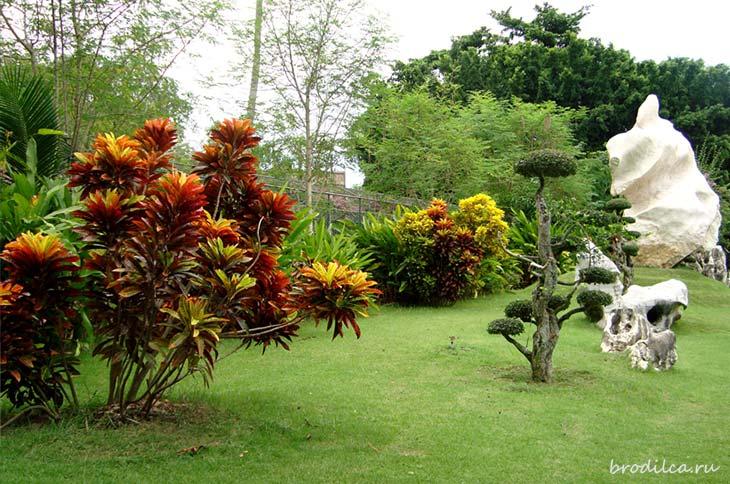Разноцветные краски парка