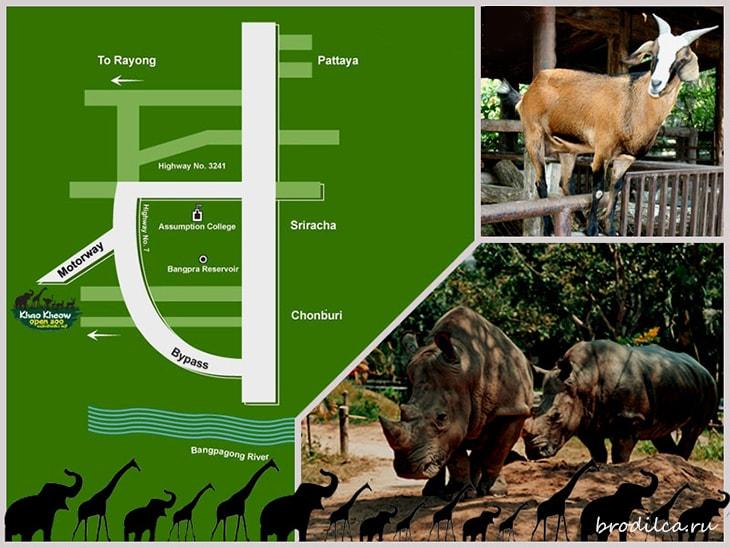 Как добраться до зоопарка