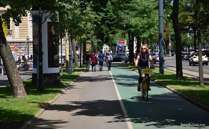 Выделенные велодорожки